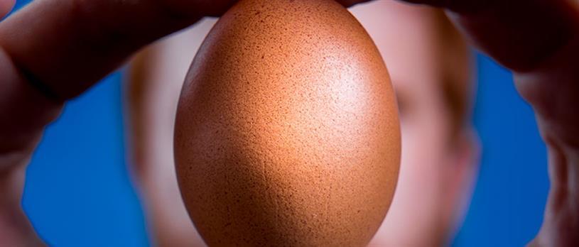 instagram egg