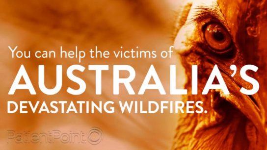 patientpoint australia wildfire psa
